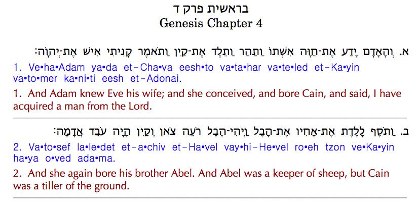 Genesis Hebrew Word Study Skip Moen